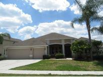 View 26525 Shoregrass Dr Wesley Chapel FL