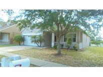View 10830 Newbridge Dr Riverview FL