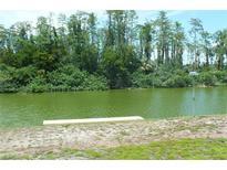 View 1705 Danbury Dr Sun City Center FL