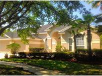 View 5534 Garden Arbor Dr Lutz FL