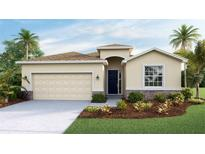 View 10607 Scenic Hollow Dr Riverview FL