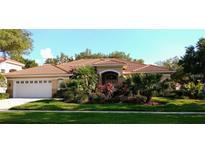 View 9305 Cypress Bend Dr Tampa FL