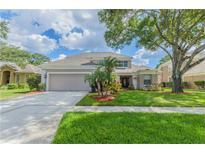 View 6008 Williamsburg Way Tampa FL