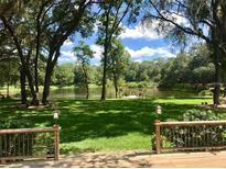 View 510 Stone Lake Pl Brandon FL