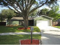 View 4904 Crockett Ct Tampa FL