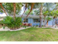 View 813 W Alfred St Tampa FL