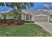 View 19116 Fern Meadow Loop Lutz FL