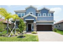 View 11928 Frost Aster Dr Riverview FL