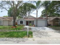 View 12712 Trowbridge Ln Tampa FL