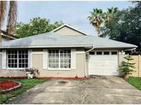 View 11944 Sugar Tree Dr Tampa FL