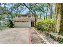 View 14706 Oak Vine Dr Lutz FL