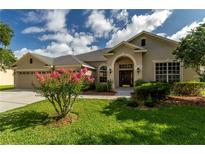 View 22745 Robins Nest Ct Land O Lakes FL