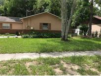 View 8302 Tupelo Dr Tampa FL