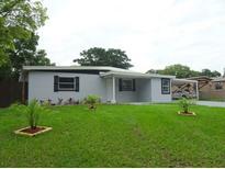 View 7107 N Tampania Ave Tampa FL