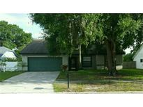 View 12111 Fruitwood Dr Riverview FL