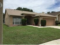 View 13453 Beechberry Dr Riverview FL