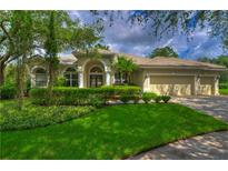 View 17822 Hickory Moss Pl Tampa FL