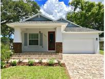 View 203 W Hamilton Tampa FL