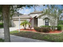 View 11347 Flora Springs Dr Riverview FL