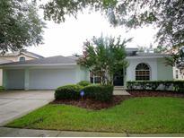 View 17715 Hampshire Oak Dr Tampa FL