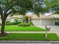 View 10210 Garden Alcove Dr Tampa FL