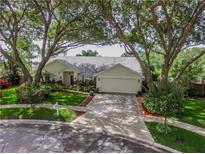 View 24212 Hampton Pl Lutz FL