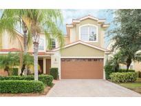 View 4141 Courtside Way Tampa FL