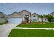 View 14303 Sky Flower Ln Tampa FL