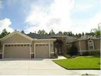 View 1830 Fircrest Ct Wesley Chapel FL