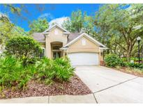 View 2220 Green Oaks Ln Tampa FL