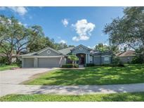 View 2314 Timbergrove Dr Valrico FL
