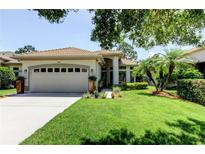 View 1544 Woodstream Dr Oldsmar FL