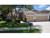 View 15735 Starling Water Dr Lithia FL