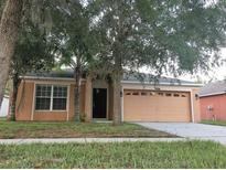 View 4012 Constantine Loop Wesley Chapel FL