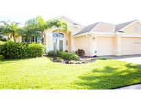 View 10636 Gretna Green Dr Tampa FL