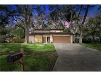 View 2802 Ormandy Ct Tampa FL