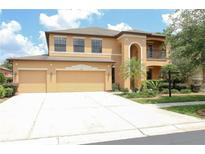View 1805 Abbey Trace Dr Dover FL