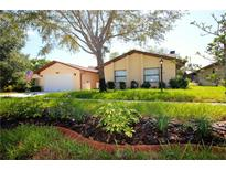 View 10834 Peppertree Ln Port Richey FL