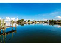 View 815 Symphony Isles Blvd Apollo Beach FL
