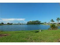 View 1606 Bunker Hill Dr Sun City Center FL