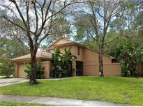 View 11817 Hickorynut Dr Tampa FL