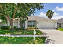 View 18213 Collridge Dr Tampa FL