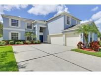View 10606 Grand Riviere Dr Tampa FL
