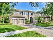 View 14835 Tudor Chase Dr Tampa FL