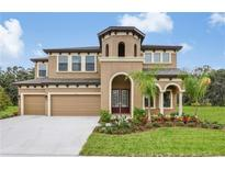 View 13713 Moonstone Canyon Dr Riverview FL