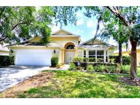View 17509 Woodthrush Pl Tampa FL