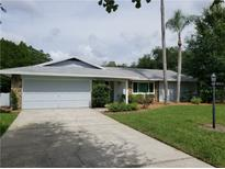 View 17024 Shady Pines Dr Lutz FL