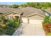 View 3817 Evergreen Oaks Dr Lutz FL