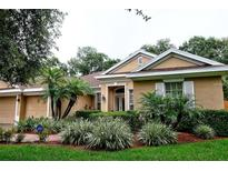 View 14919 Devonshire Woods Pl Tampa FL