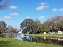 View 13707 Juniper Blossom Dr Tampa FL